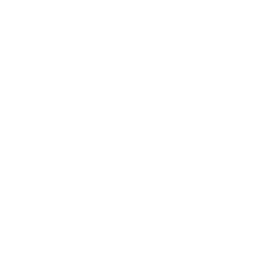 Roundabout Icon