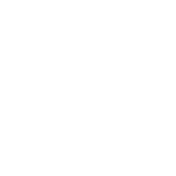 Bike At Night Icon
