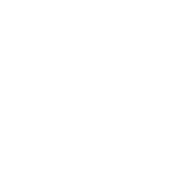 Double Speeds Icon