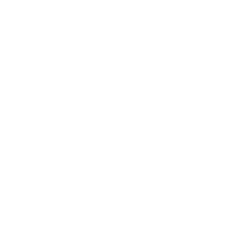 Drifting Lane Icon