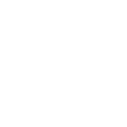 Obstacle Icon
