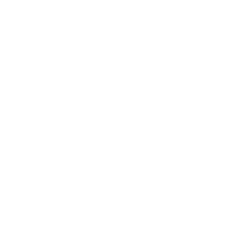 Seatbelt Violation Icon