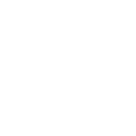 Icon Road Diet